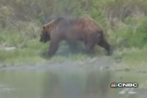 Man recounts horror of Alaska grizzly attack