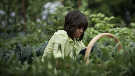 US First Lady Michelle Obama works in the garden on the South Lawn of the White House.
