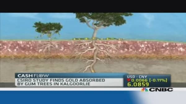Scientists find gold growing on trees in Australia