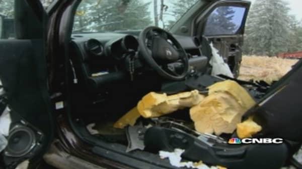 Bears completely destroy inside of Honda Element