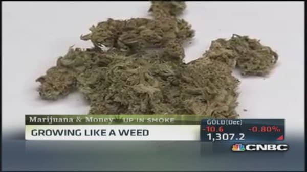 Gallup: Legal pot grows like a weed