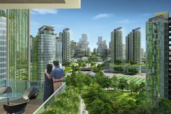 6 Steps To Creating An Eco City