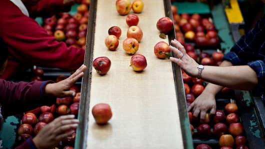 Jack Brown Produce workers sort apples on a packing line in Sparta, Mich. The state, a big exporter of agricultural goods, is among U.S. regions raising its export profile.