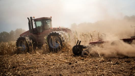 A tractor cuts down corn in a field designated as zero yield on a farm in Vigo County near Terre Haute, Indiana.