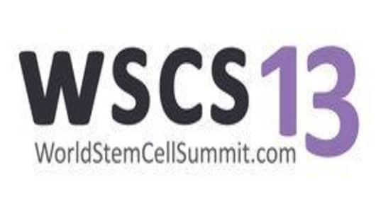 WSCS13 logo