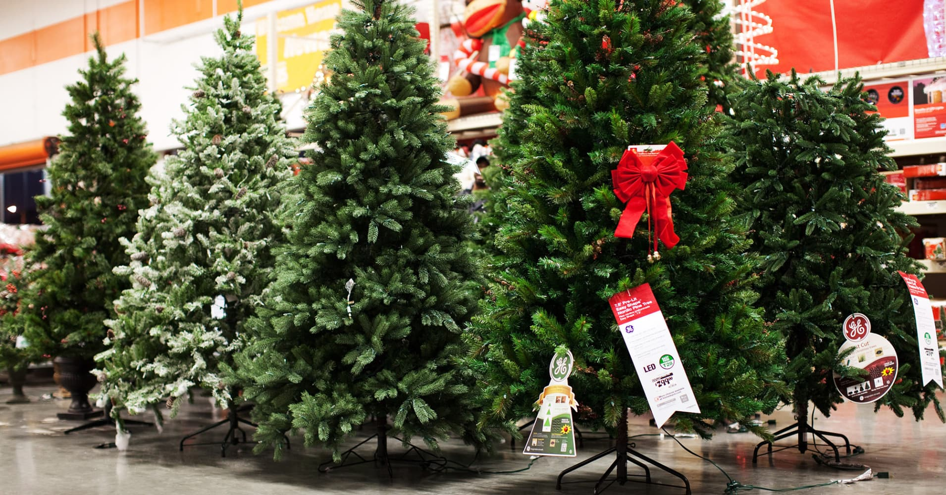 Christmas tree prices rise as growers recover from Great ...