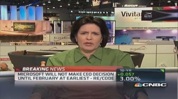 No Microsoft CEO before February: Pro