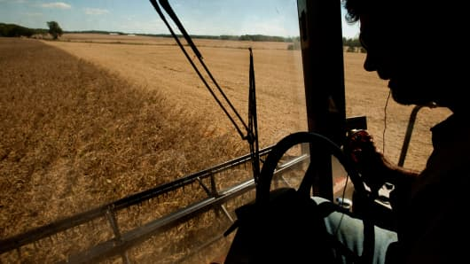 A farmer drives a combine while harvesting soybeans.