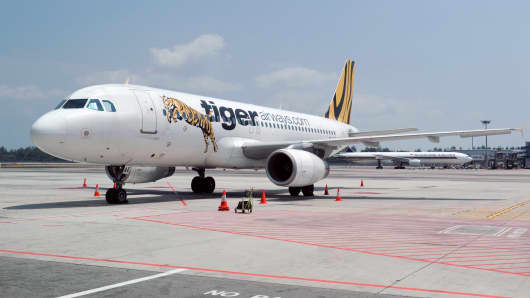 This photograph taken on February 10, 2014 shows budget airline TigerAir parking at Changi International Airport in Singapore.