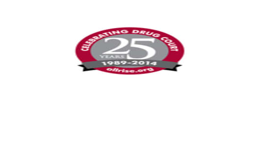 25th Anniversary of Drug Court logo