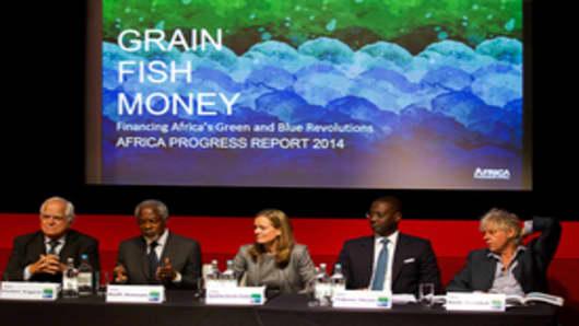 Africa Progress Panel Members