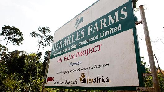 Herakles Farms sign in Cameroon.