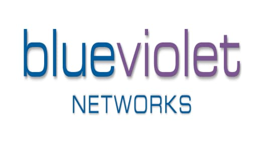 Blue Violet Networks Logo