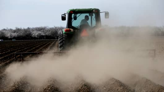 A tractor plows a field in Firebaugh, Calif.  The farmer had 20 percent of his almond trees removed because he doesn't have access to enough water to keep them watered.