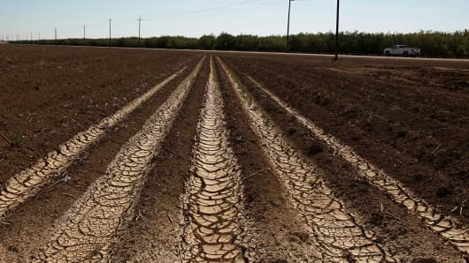 Dried and cracked earth on an unplanted field at a farm near Mendota, Calif.
