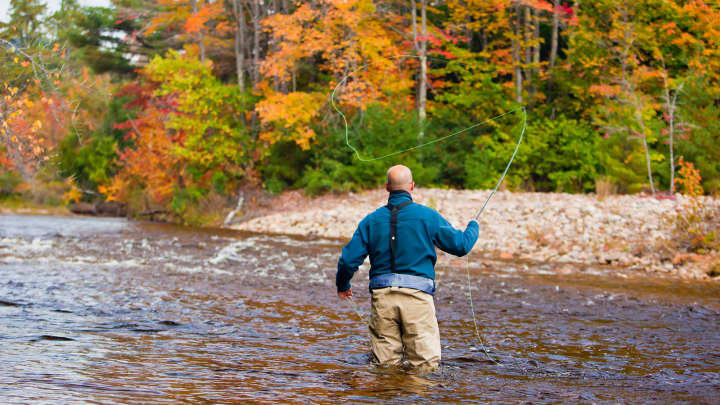 Fly-fishing in Swift River, White Mountains, Albany, New Hampshire,
