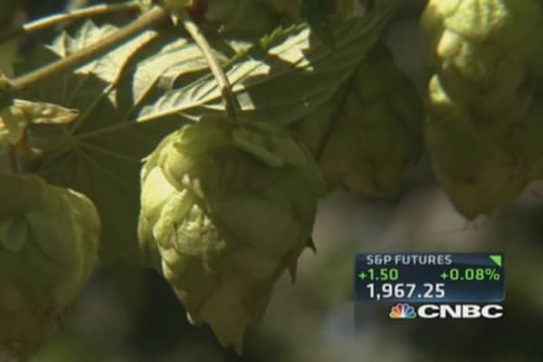 What's 'hoppening' to beer prices?