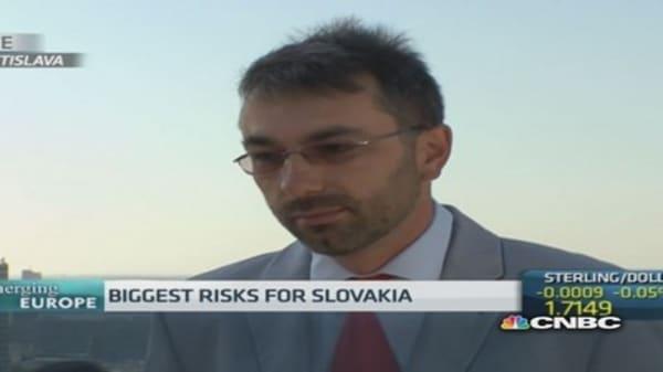 Ukraine crisis has 'hurt' Slovakia: Pro
