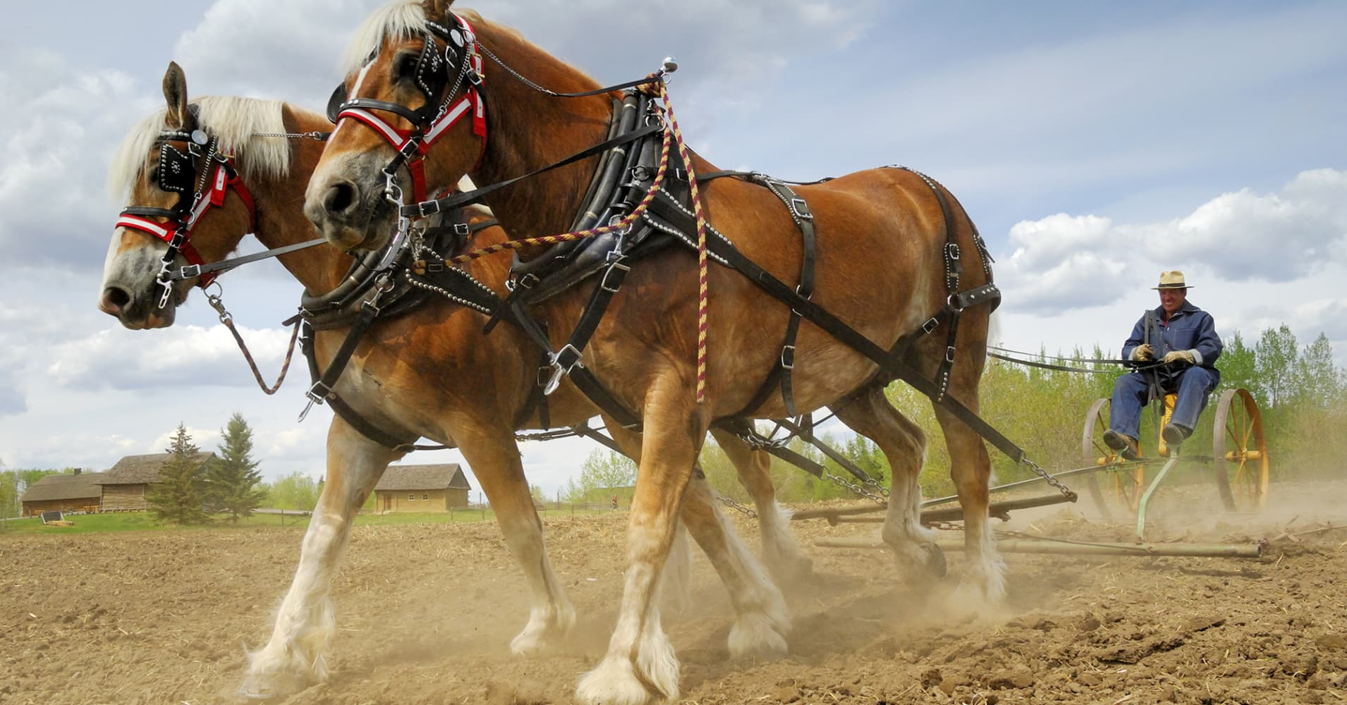 Workhorse: Upcoming Dilution May Hurt Investors - Workhorse Group ...