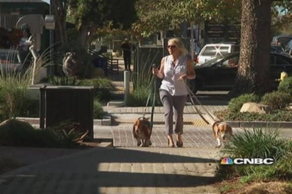 Walking rescue dogs in Malibu