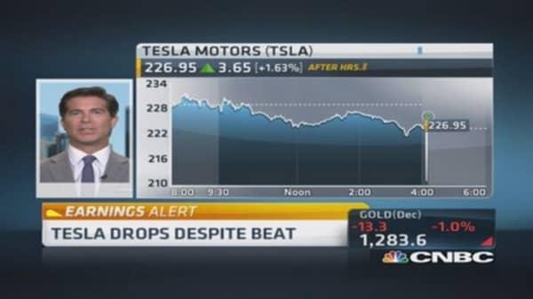 Tesla has great growth strategy: Pro