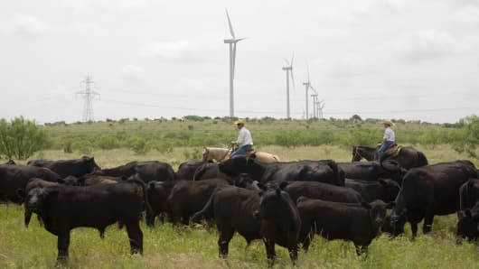 The Brandon family leases and manages the cattle ranch they have lived on for 19 years and have no issues with the 240 foot wind towers they see ev