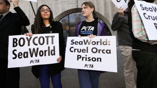Rachelle Owen and Rose McCoy attend a PETA courthouse demonstration as SeaWorld opponents arrested at the Rose Parade are arraigned at Pasadena Courthouse on February 3, 2014 in Pasadena, Calif.