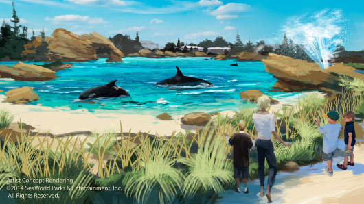 Following protests, SeaWorld said it will build new killer whale environments at its marine parks.