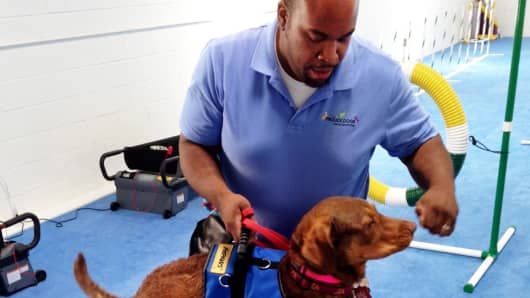 Dog trainer Kevin Gilliam recently opened Frolick Dogs, a 5,000 sq. ft. dog gym in Alexandria, Va. The new facility has everything from doggie tread mills to a regulation agility course.