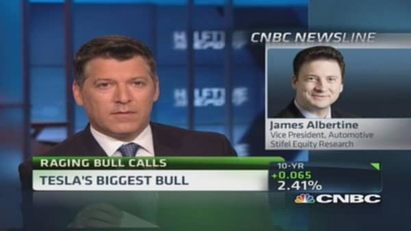 Tesla's biggest bull