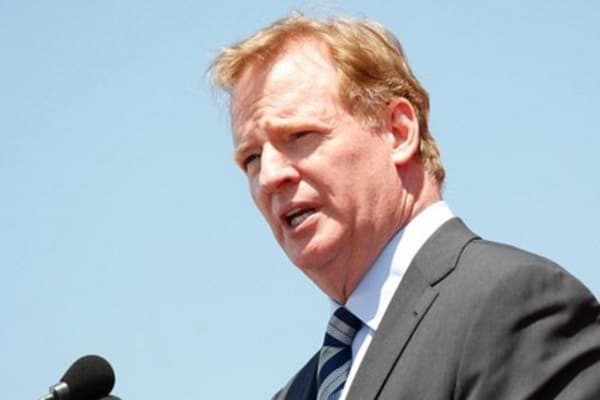 Roger Goodell knew Rice hit fiancé: Steinberg