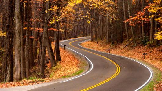 Fall foliage and road