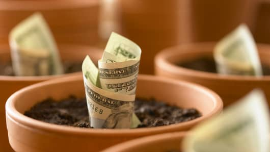 planting money, money in pots, retirement, saving for retirement, 401K