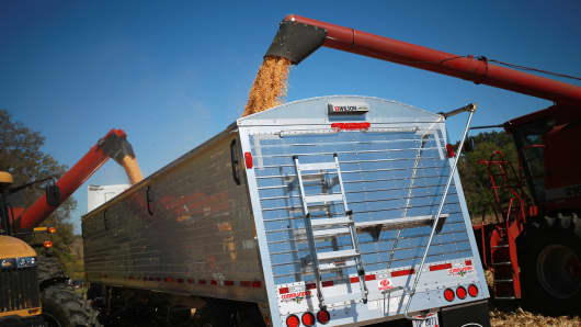 Corn is deposited into a semi-trailer after being harvested in Shelbyville, Kentucky.