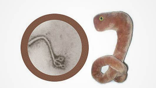 The giant Ebola plush toy, from Giant Microbes.