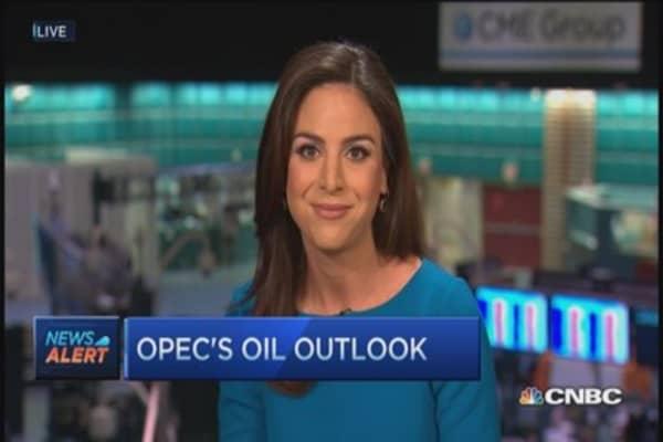 OPEC's oil outlook