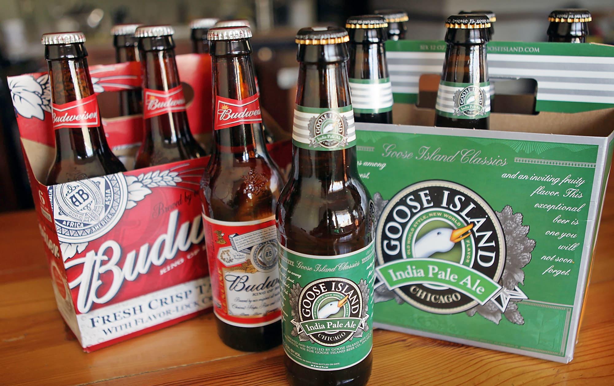 100 world of beer drink it interns internship