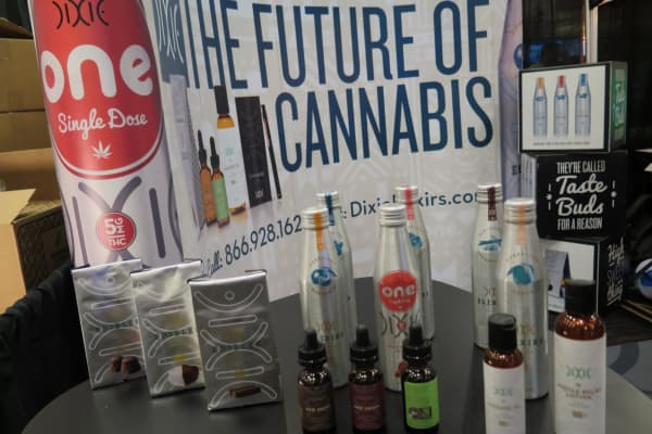 future of cannabis, pot business, marijuana business