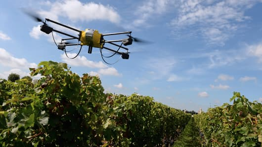 Drone flying over vineyard