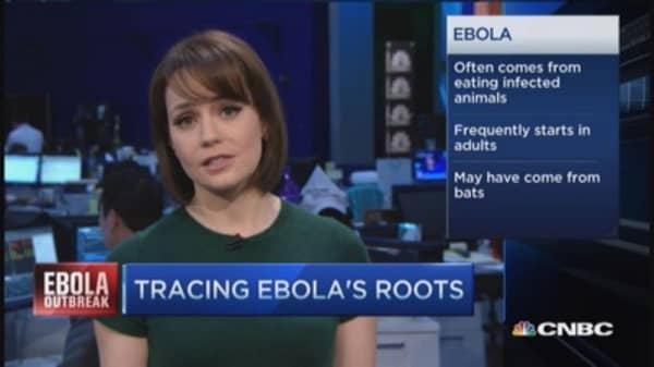 Ebola outbreak's 'patient zero'