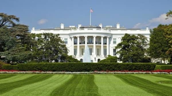 The 'dynastic' contest for the White House
