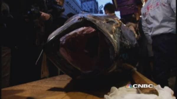 Bluefin nets $37,500