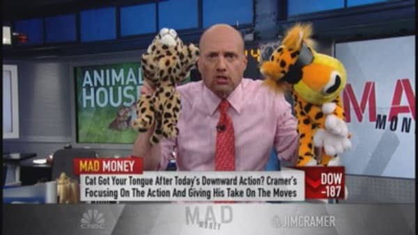 Cramer: Market taking a cat nap?