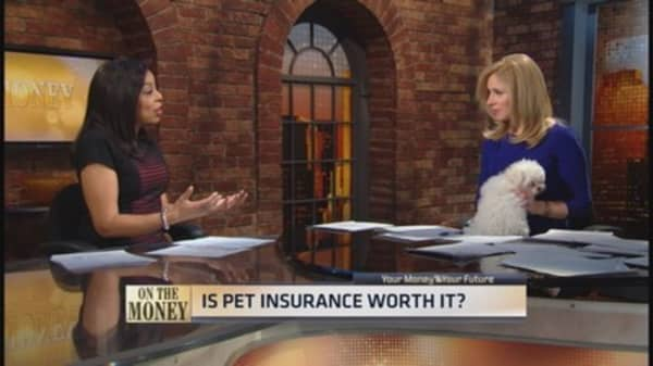 Protect your pet & purse