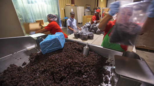Workers measure out raisins into 5lb bags at the Raisin Valley Farms Raisin coop in Kerman, CA.