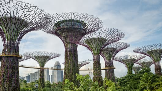 Singapore's Gardens by the Bay, one of the top 10 indoor gardens of the world.