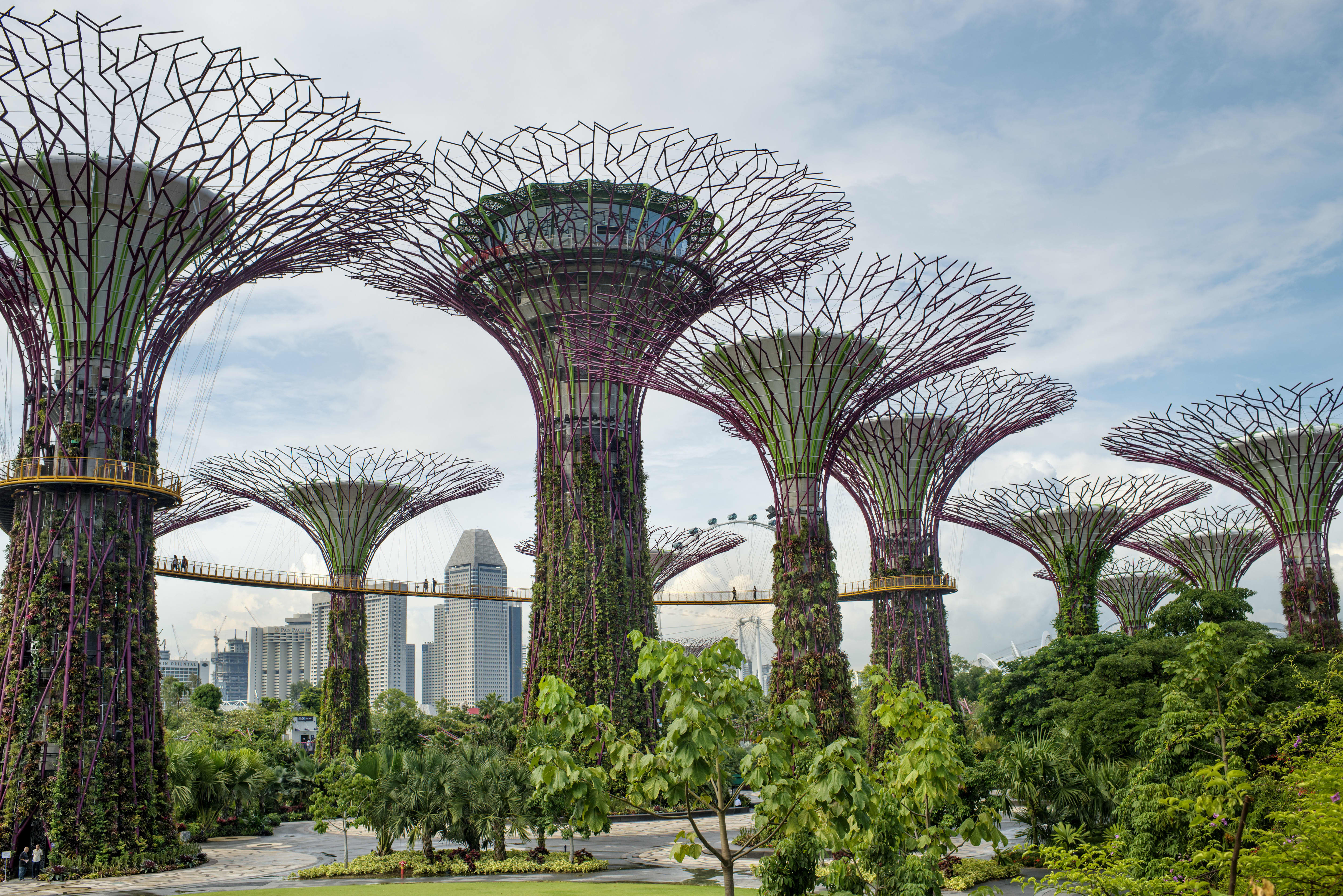 indoor garten in singapur gardens by the bay singapore
