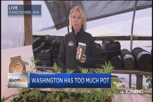 This pot grower facing bankruptcy