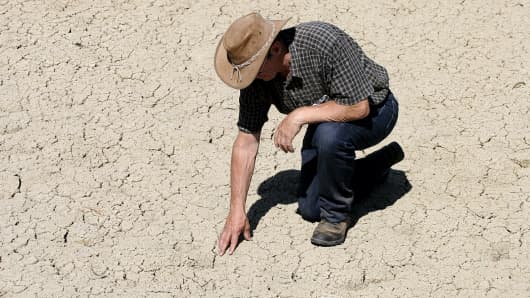 Farmer inspects dry ground