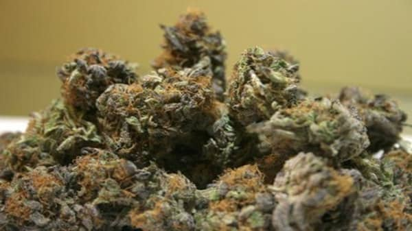Marijuana now legal in DC... with restrictions
